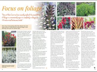 matt-rees-warren-foliage-article-country-gardener