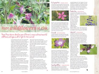 matt-rees-warren-rare-wildflowers-artcile-country-gardener.png