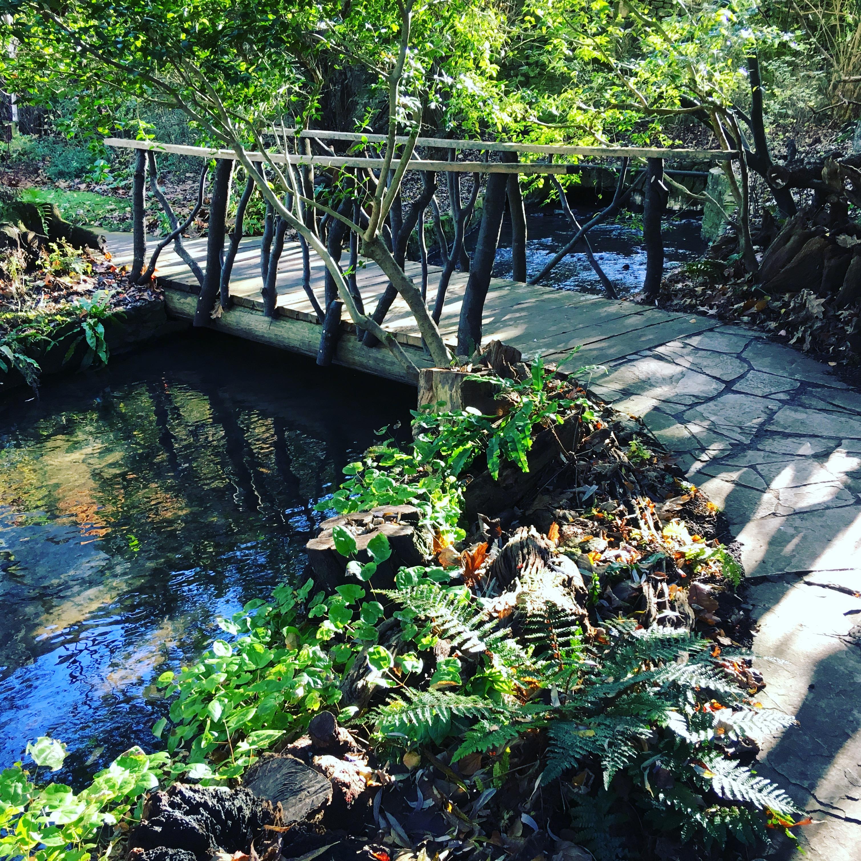 garden reclamation design landscape