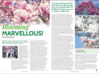 matt-rees-warren-magnolia-garden-article