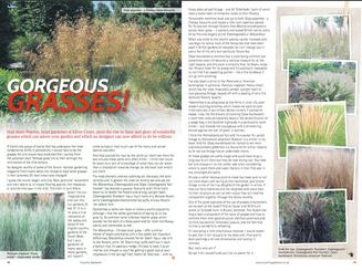 matt-rees-warren-garden-article-grasses-country-gardene