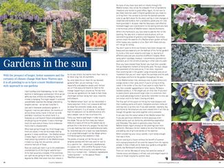 matt-rees-warren-mediterranean-gardens-country-gardener-article.png