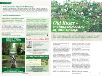 matt-rees-warren-garden-article-old-roses-country-gardener
