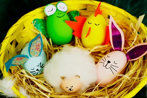 Animal egg characters