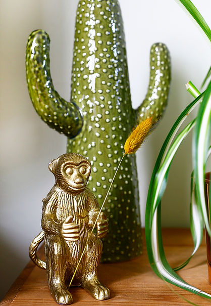 cactus and monkey.jpg