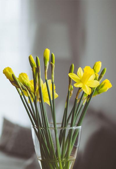 Get Interior Ready For Spring/Summer