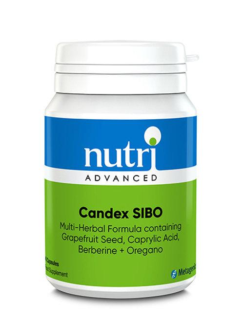 Candex SIBO 45 Capsules