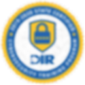 logo-DIR-Cybersecurity_edited.png