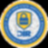 logo-DIR-Cybersecurity_edited.png
