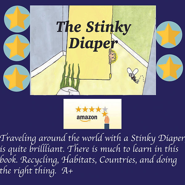 The Stinky Diper Review.jpg