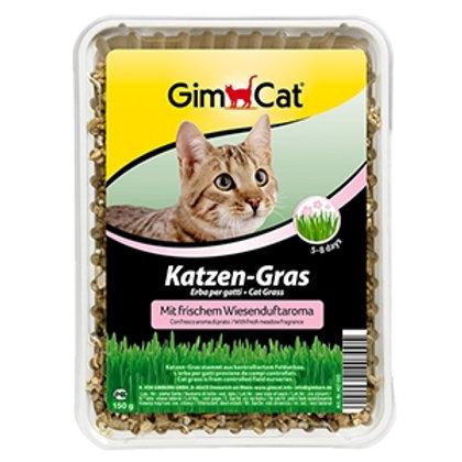 GIMCAT Erba per Gatti CAT GRASS 150 Gr.