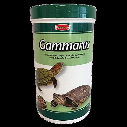 Padovan Gammarus Alimento Tartarughe d'Acqua Gamberetti piccoli Essiccati 130 Gr