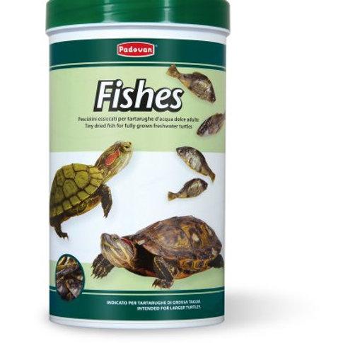 Padovan FISHES Alimento per tartarughe d'acqua dolce di grossa taglia 160 Gr.
