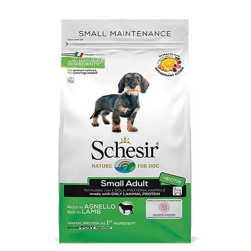 Schesir - Dry Line Small Mantenimento con Agnello 2 Kg.