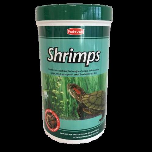 Padovan Shrimps Alimento Tartarughe Adulte d'Acqua Gamberetti Essiccati 160 Gr