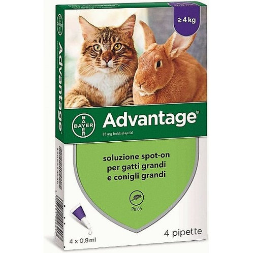 Bayer - Advantage 80 mg Gatto o Coniglio grandi