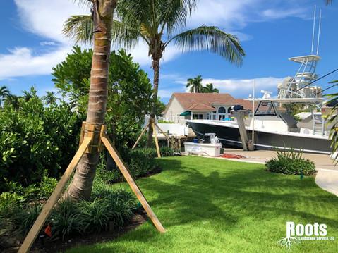 Singer Island Landscape Design Modern Tropical