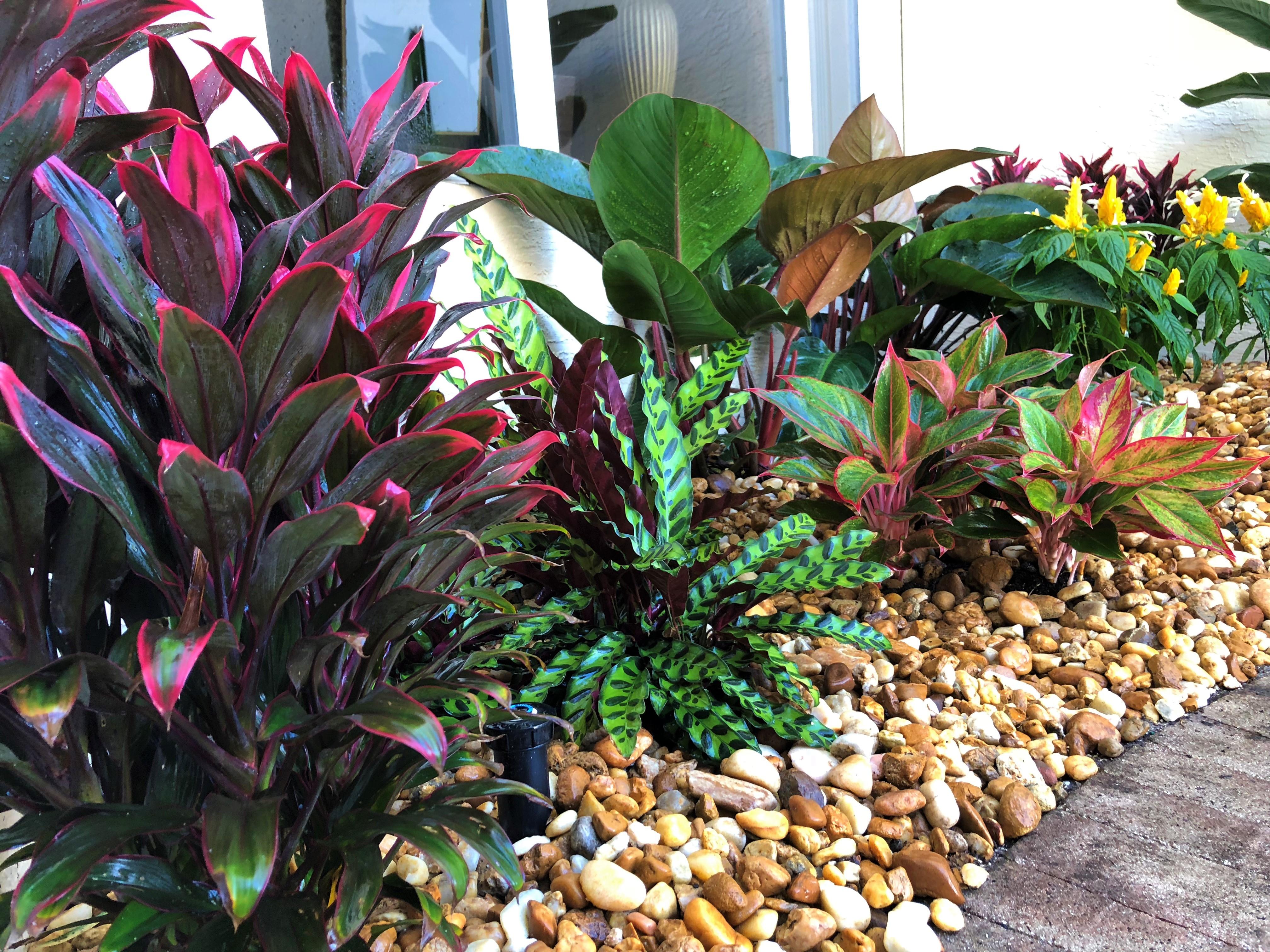 Palm Beach Gardens Landscape Design
