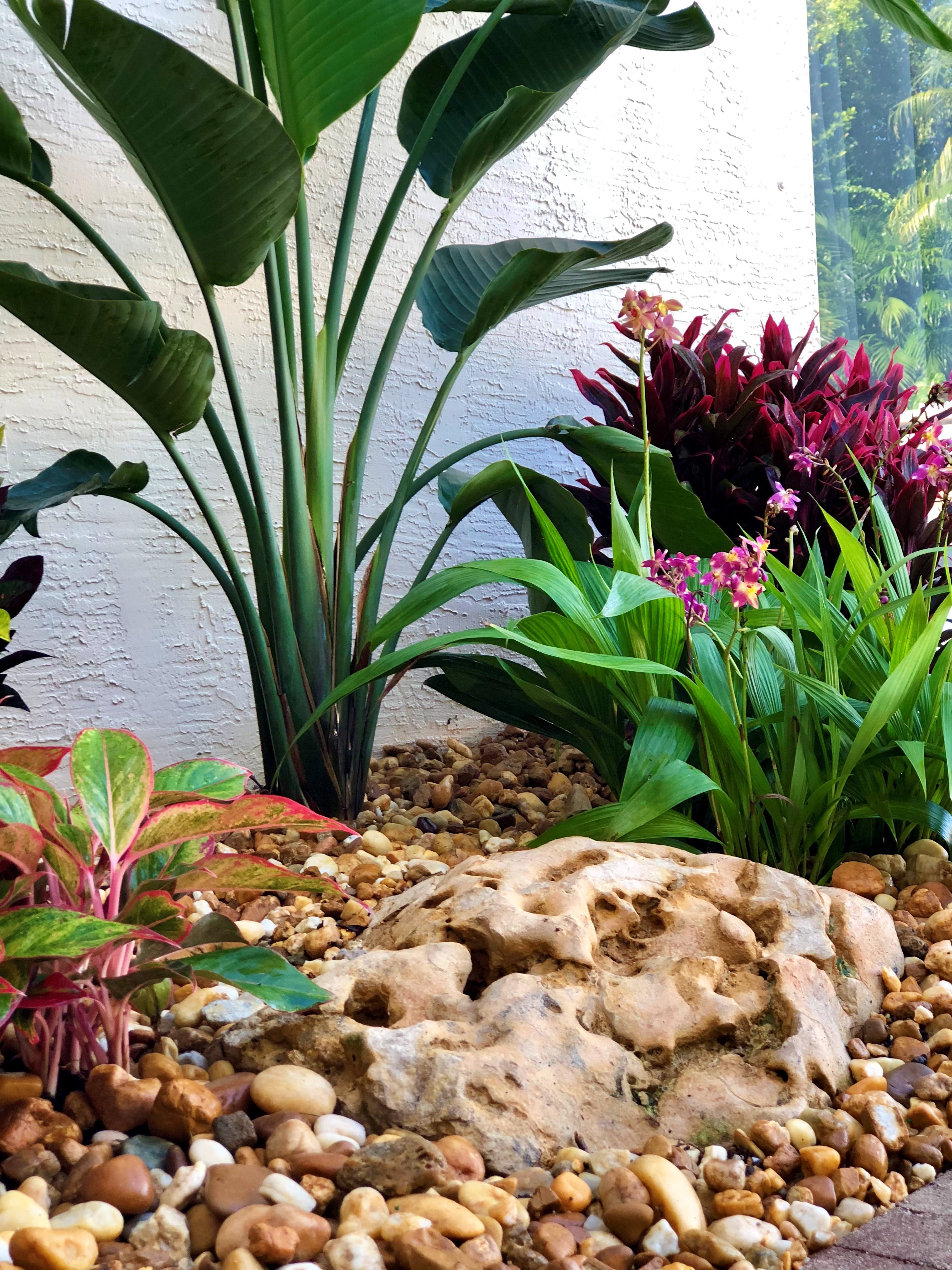 Palm Beach Gardens Landscaping