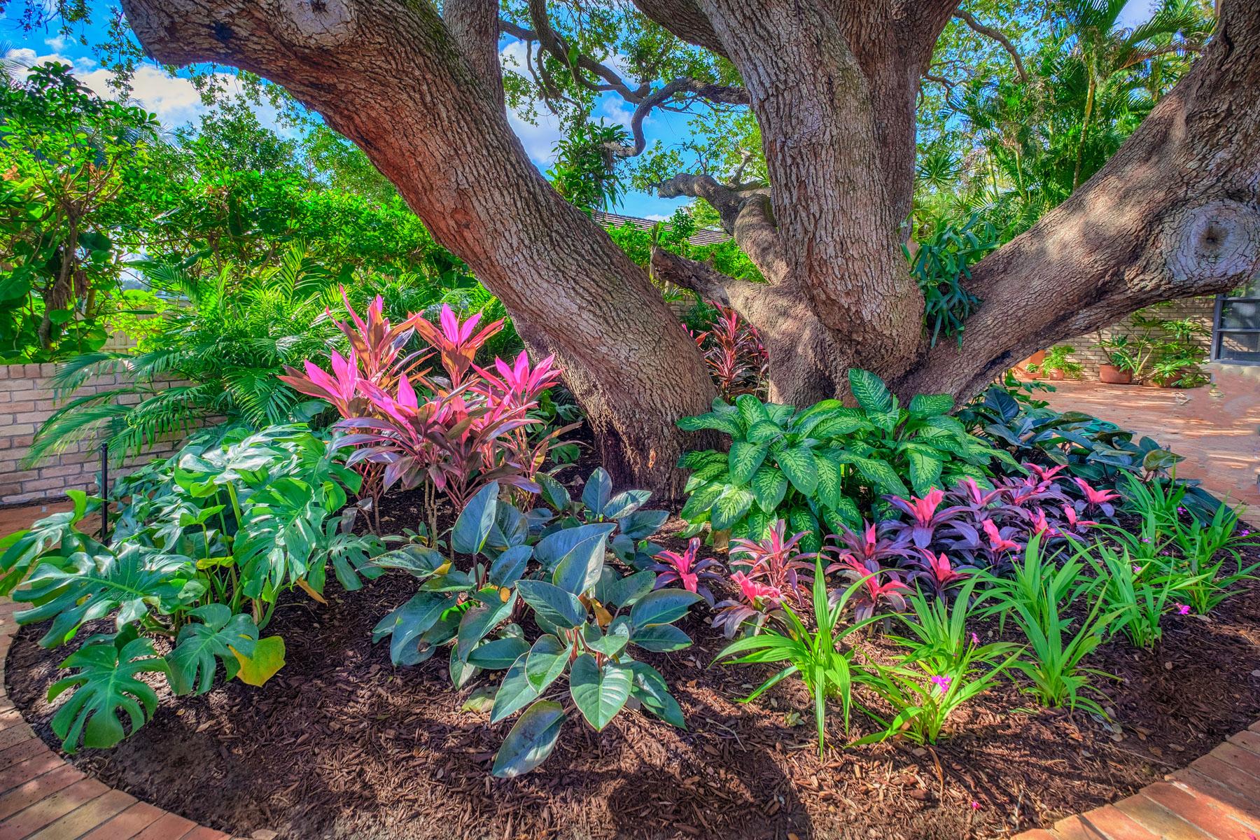 North Palm Beach Landscape Design