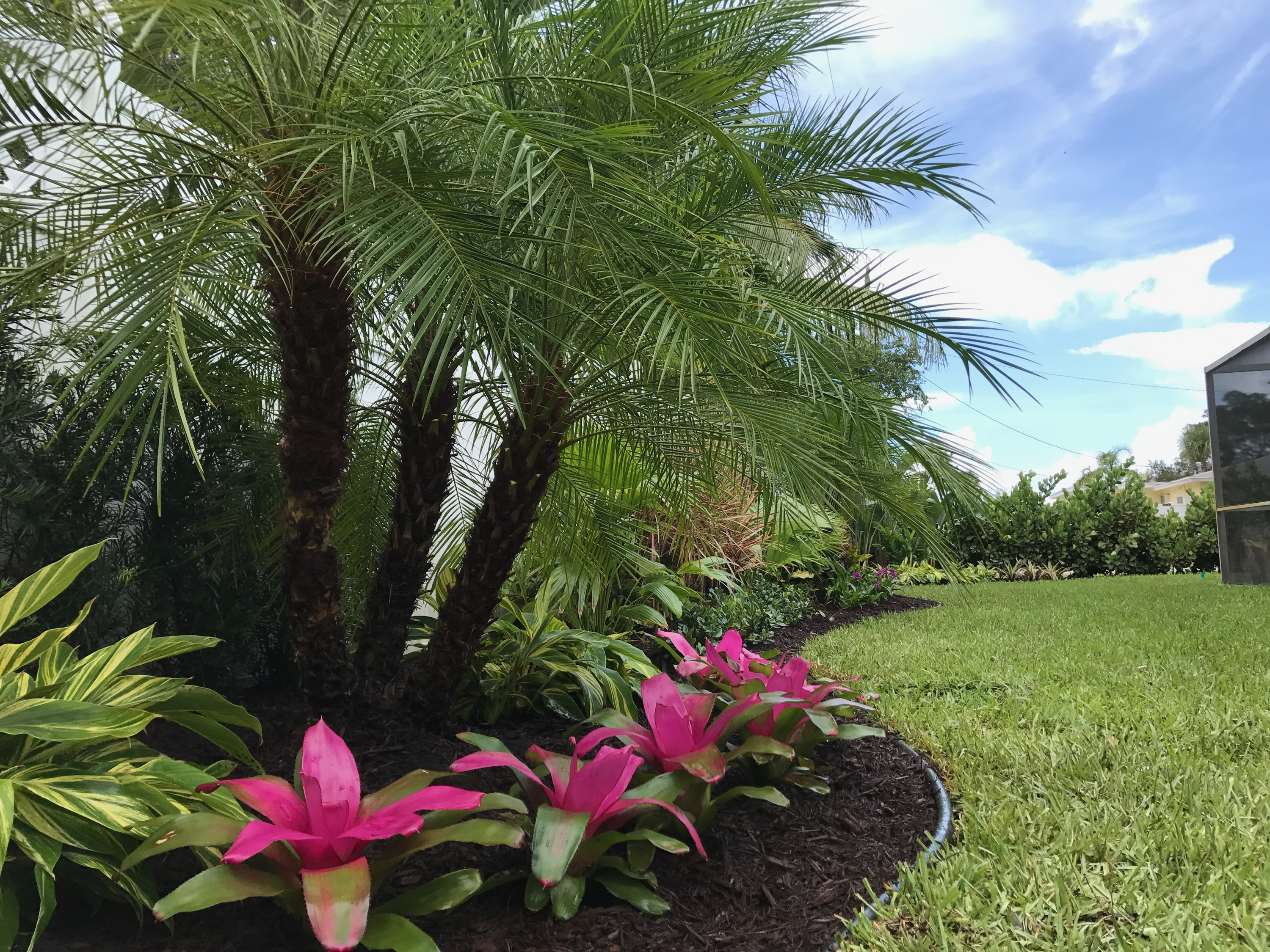 Landscaping Ideas South Florida