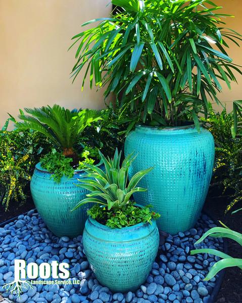 Palm Beach Gardens Landscape Designer Modern Tropical