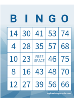 Classic Number Bingo - Private Bingo Game