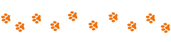paw tracks.jpg