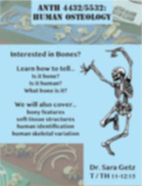 Osteology.JPG