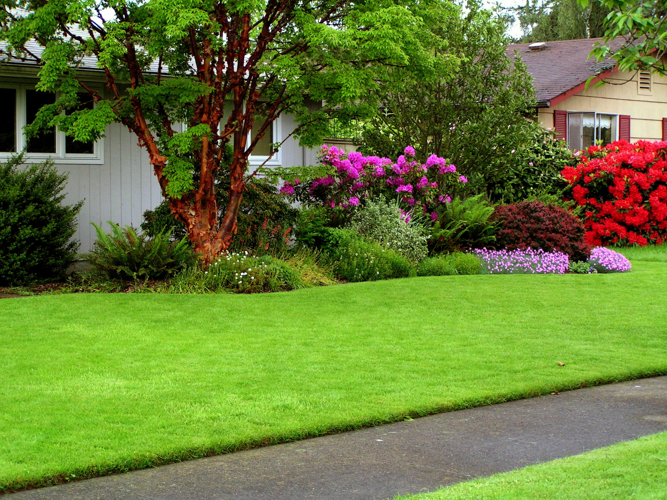 residential-lawn-services.jpg