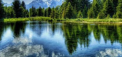 lake_futures_banner.png