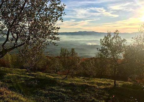 colline-toscane.jpg