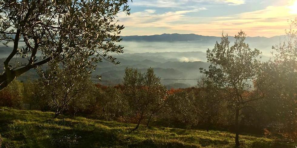 [Fully Booked] 3-week Tuscany Screenwriting Retreat - October 2021