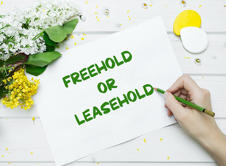 The Evergreen Legend - Freehold Is Definitely Better Than Leasehold
