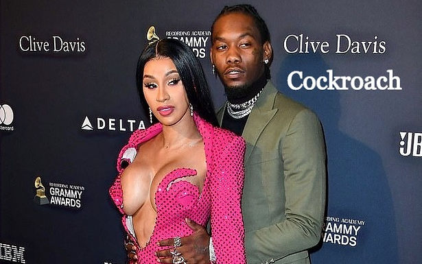 Cardi B Is Wondering Why Fans Want Her To Stay Single After She Reconciled With Offset
