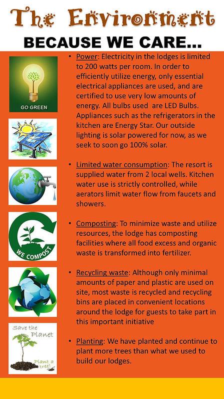 The Environment.JPG