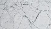 Carrara Venatino C.png