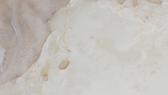 Onyx Bianco Extra.png
