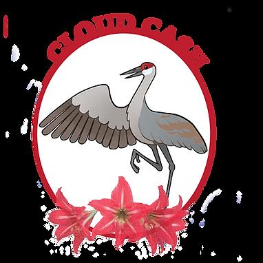 cloud cash logo.png