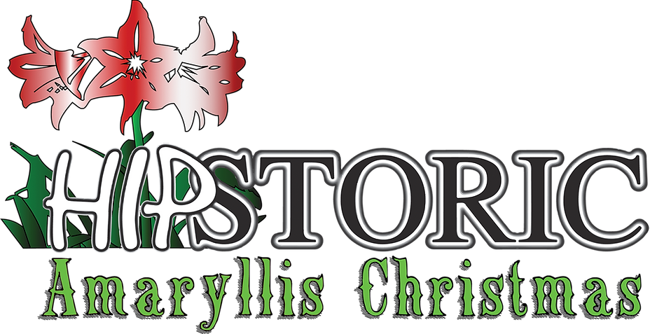 Dec Hipstoric Logo.png