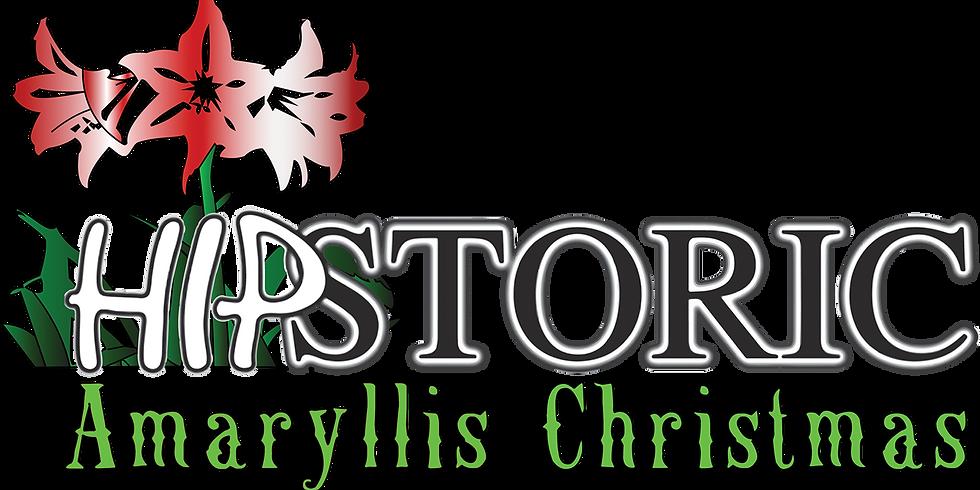 Hipstoric - An Amaryllis Christmas