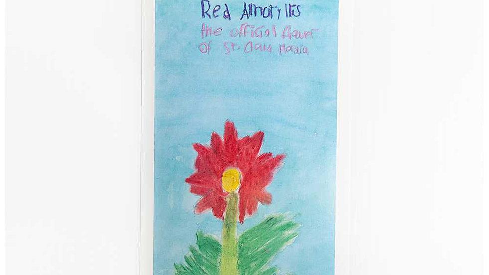 Kate's Amaryllis Postcard