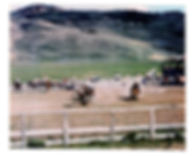 300_Cdale Rodeo.png