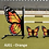 Thumbnail: Butterfly Standards, including filler