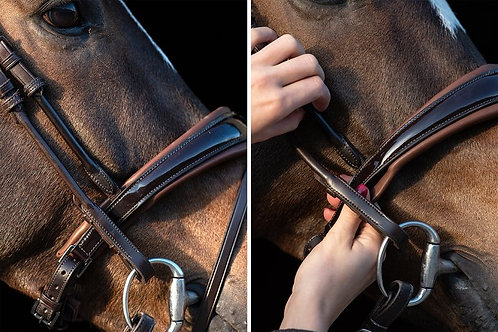 Noseband GP, Brown / Non-Patent