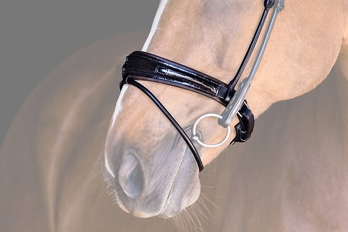 Noseband All In Flash