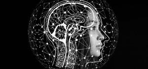 Avanço em aprendizado de máquina possibilita novas tecnologias baseadas na análise de imagens