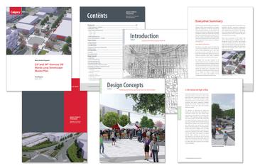 Marda Loop Main Streets Program report template
