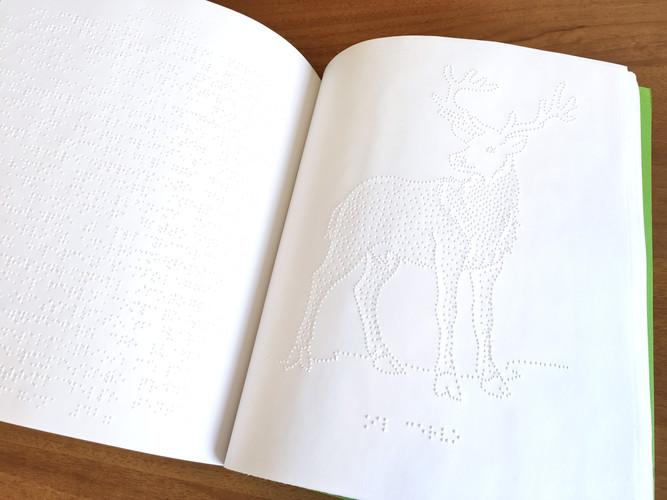 Calendario Braille con disegni