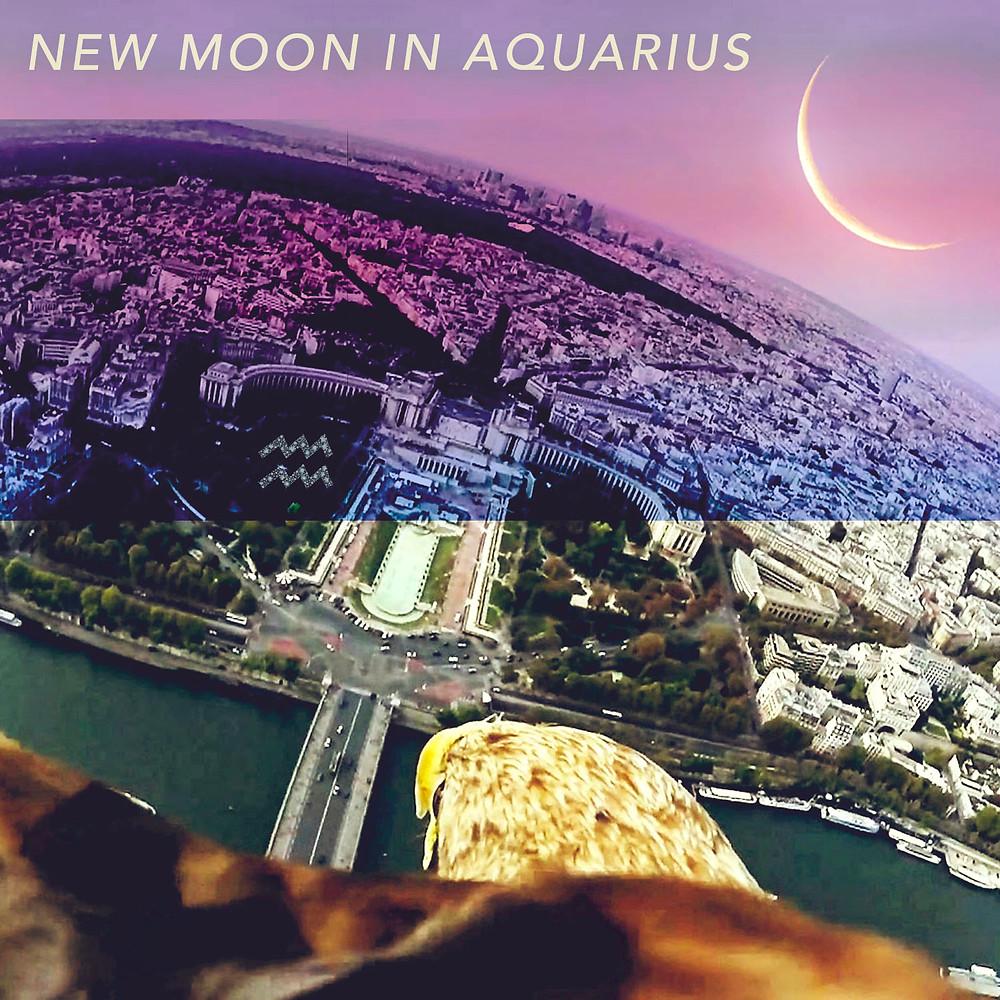 New Moon in Aquarius 2020 - Energetic Principles
